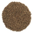 Frontier Natural Products, Whole Celery Seed, 16 oz (453 g) - iHerb.com