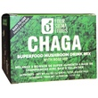 Four Sigma Foods, Chaga Superfood Mushroom Drink Mix with Rose Hip, 20 Packets, 0.1 oz (3 g) Each - iHerb.com