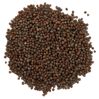 Frontier Natural Products, Organic Whole Brown Mustard Seed, 16 oz (453 g) - iHerb.com